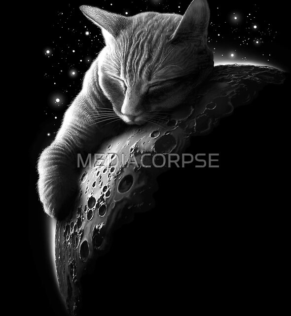 MOONCAT  by MEDIACORPSE