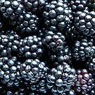Blackberries by VanOostrum
