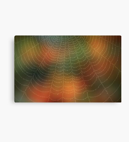 Water drops on a spider web Canvas Print