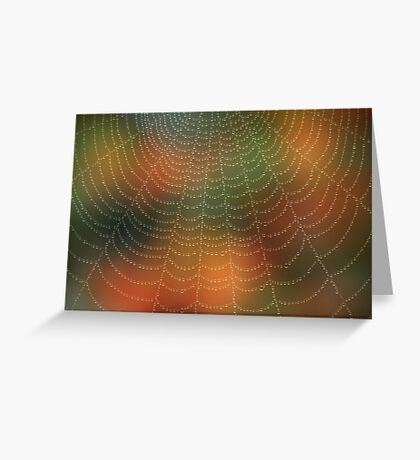 Water drops on a spider web Greeting Card