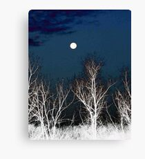 The Moon--Tarot Major Arcana Canvas Print