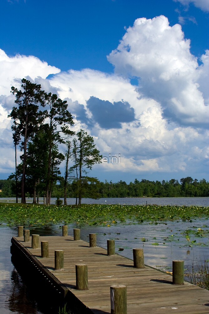Caney Lake Dock by steini