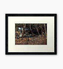 Holga Framed Print