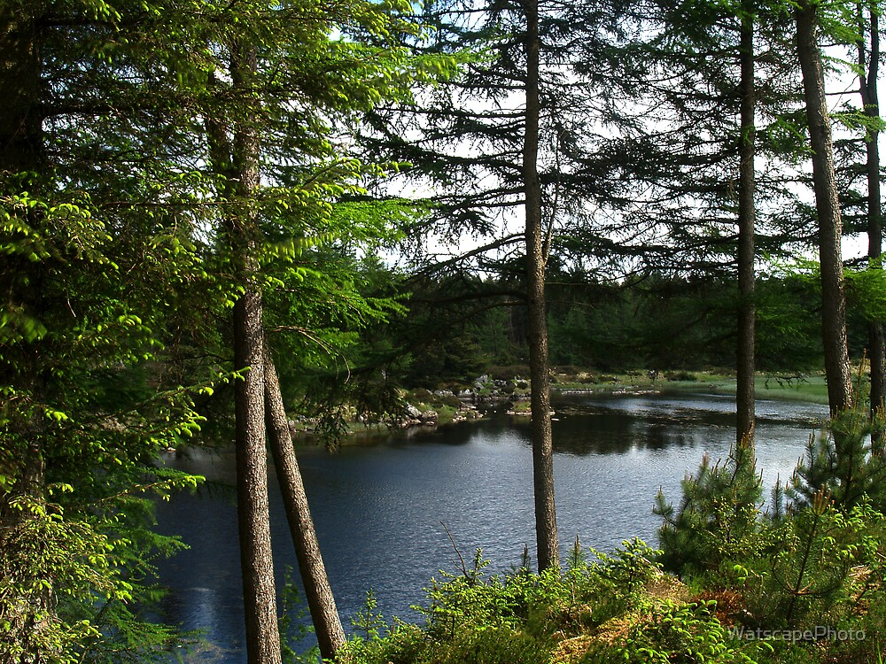 Loch Gover by WatscapePhoto