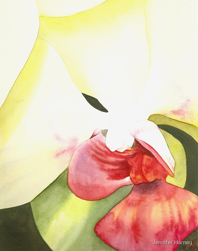 Sunset Phalaenopsis #9 by Jennifer Harney