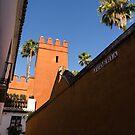 Juderia - Quintessential Spain in Barrio Santa Cruz Seville by Georgia Mizuleva