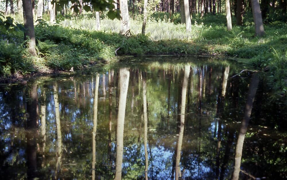 The lake in Moorlands, Skelton, York by MayWebb