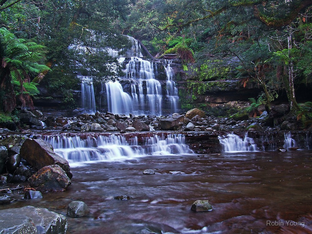 Liffey Falls by Robin Young