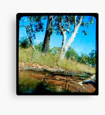 Milly's Creek  Canvas Print