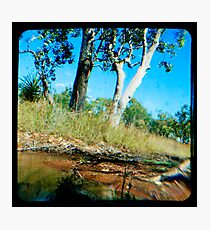 Milly's Creek  Photographic Print