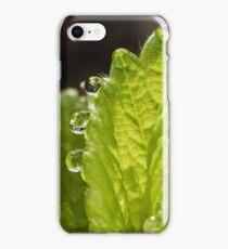 Dew Drops iPhone Case/Skin