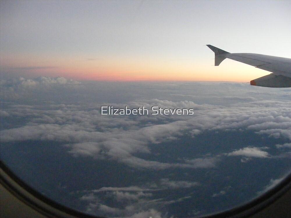 airview by Elizabeth Stevens