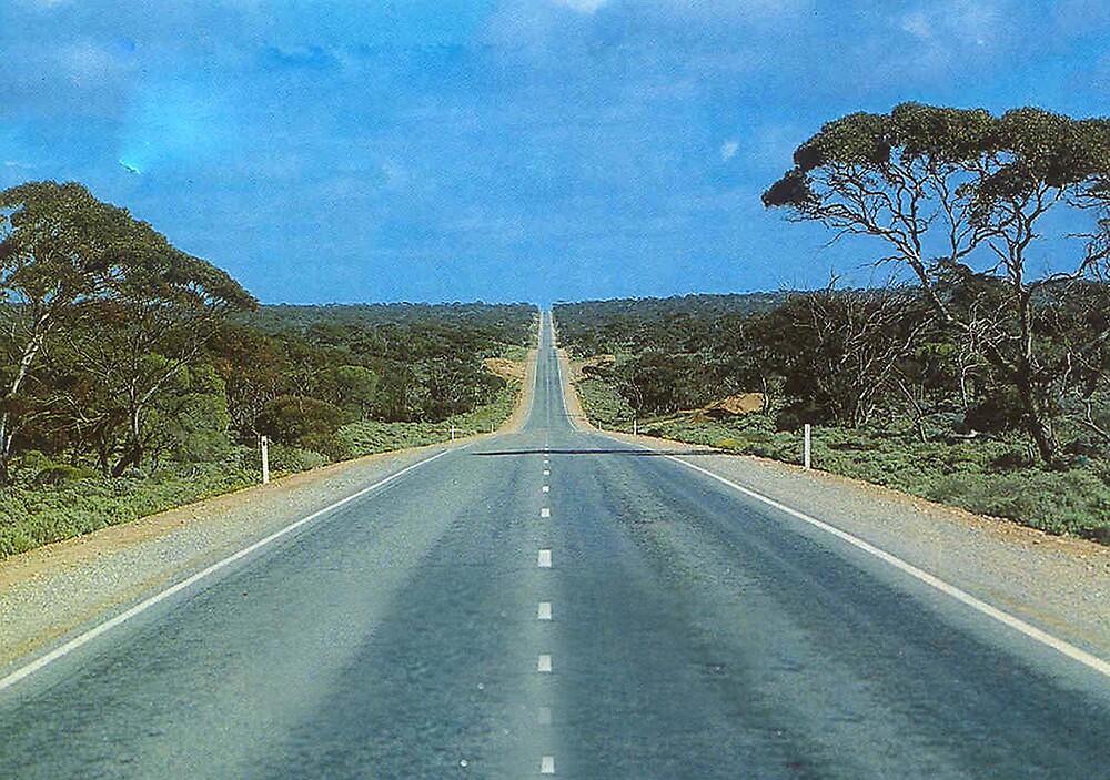 Eyre Highway by georgieboy98