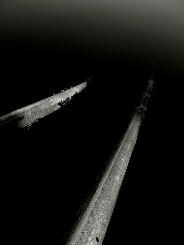 tracks by Michael Gray