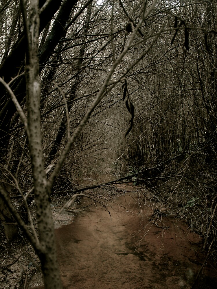blood creek by Michael Gray