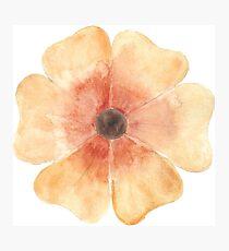 Orange Watercolor Flower Photographic Print
