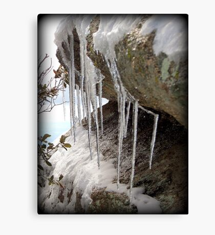 Droplets Frozen in Time  Canvas Print