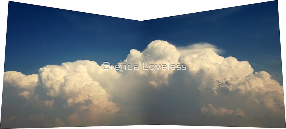 cloud mass by Brenda Loveless