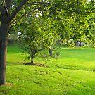 Lafayette Park by Joey Brunelle