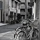 Urban transport, Tokyo Japan by Norman Repacholi