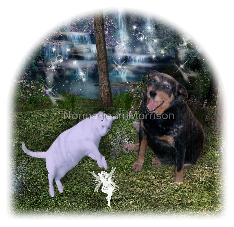 My Pets by Norma-jean Morrison