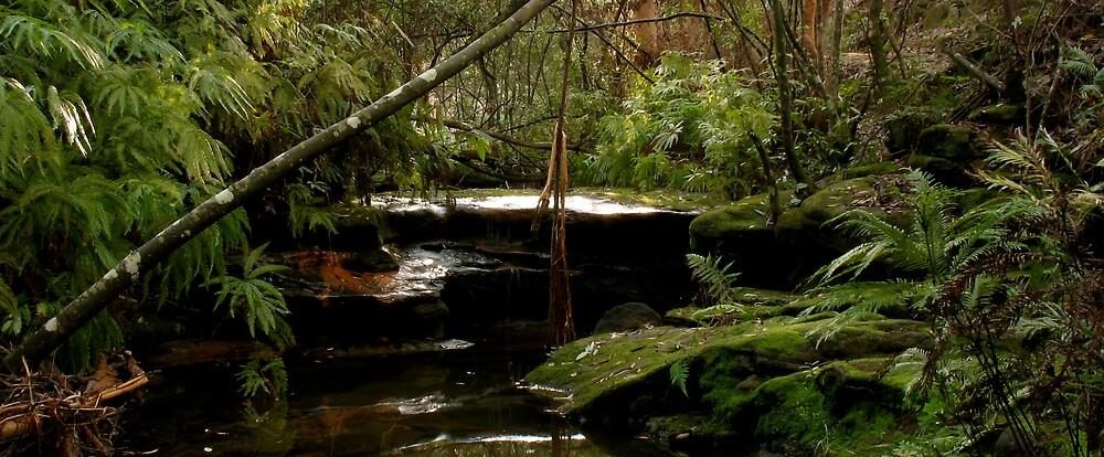 waterfall by Michael Gray