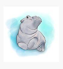 Fiona das Baby-Flusspferd-Schwimmen Fotodruck