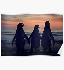 Three Penguins Poster