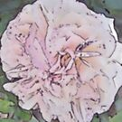 Joie de Vivre Rose (digitally altered) by lezvee