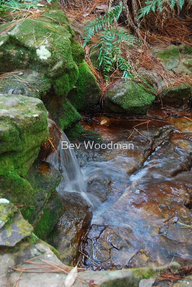 Mossy Waterfall by Bev Woodman