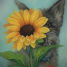 Peeking Pup by Pam Humbargar