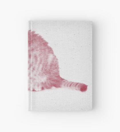 Kitten 01 Hardcover Journal