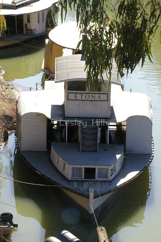 Echuca Riverboat The Etona   by Lesley  Hill