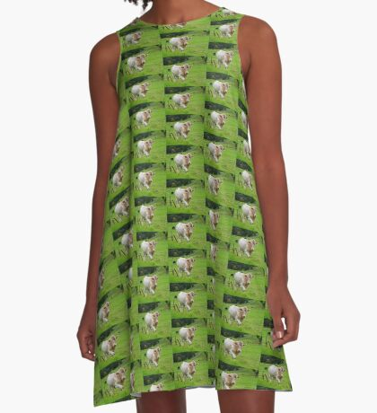 In dem Land A-Linien Kleid