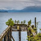 The Old  Pier at Icy Strait  by John  Kapusta
