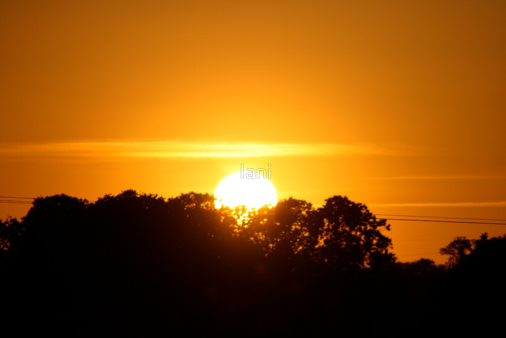 Sunset orange by Iani
