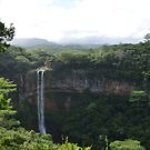 Chamarel Waterfall by Julie Masters