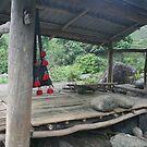 A Place to Rest by JenniferC