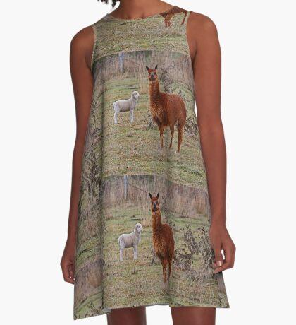 Alpaka und Freund A-Linien Kleid