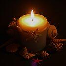 Sea Shells & Candle by Evita