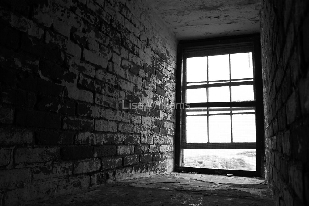 Isolated Window by Lisa Williams
