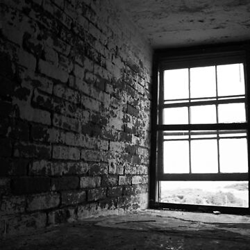 Isolated Window by animorphic