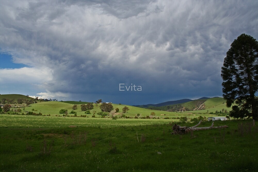 Storm is coming by Evita