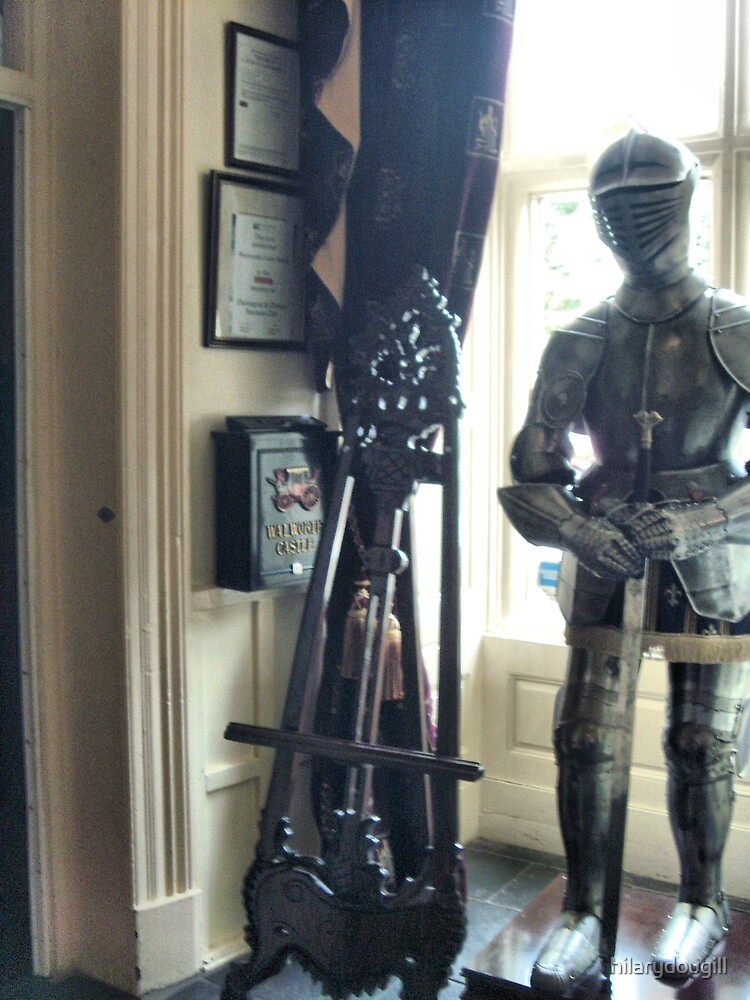 Suit of Armour by hilarydougill
