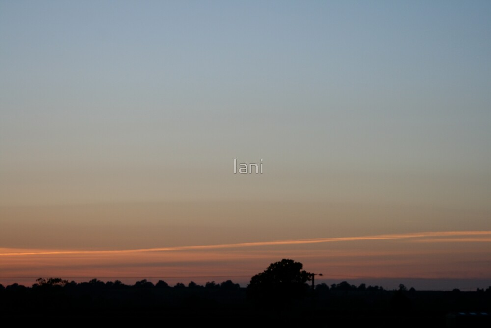 A Lighter shade of Pale by Iani
