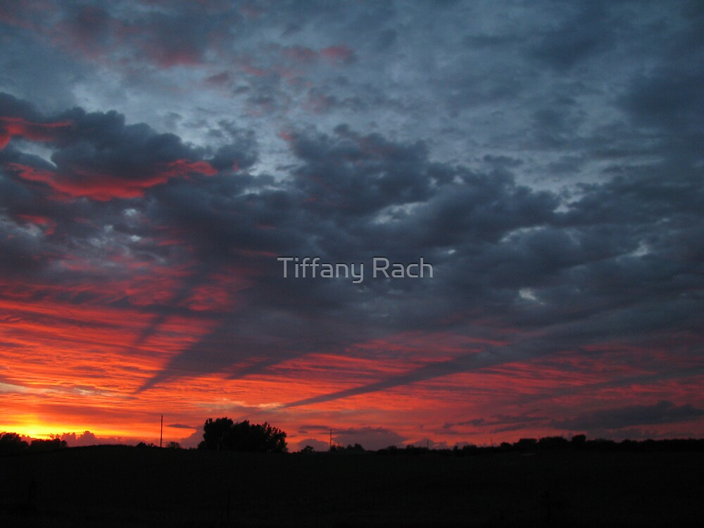 Sunset  by Tiffany Rach