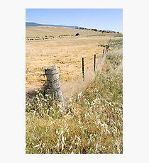 Rural Photographic Print