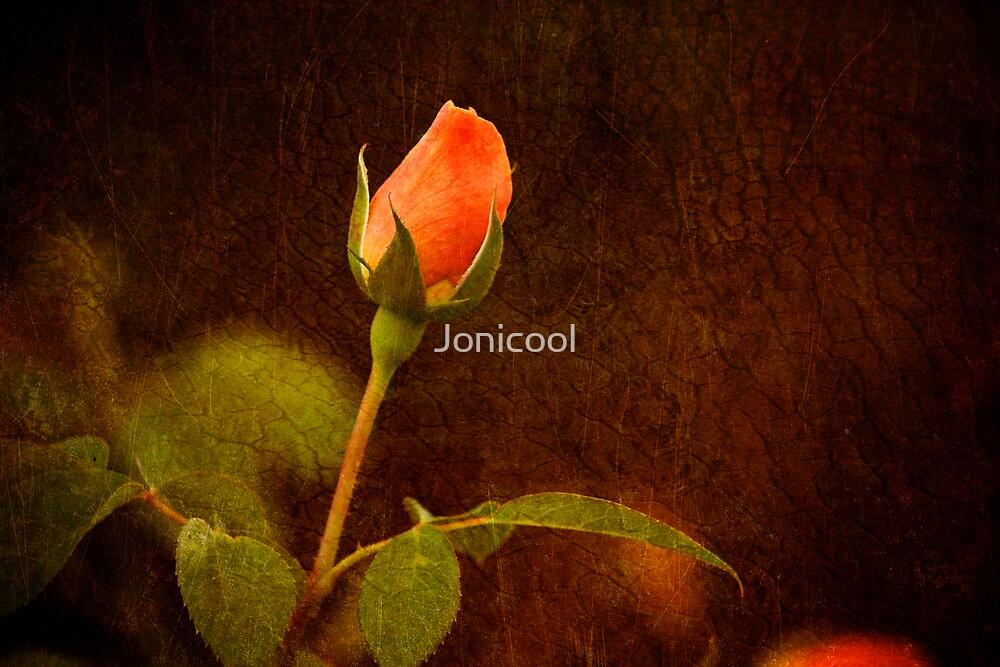 Remembering by Jonicool