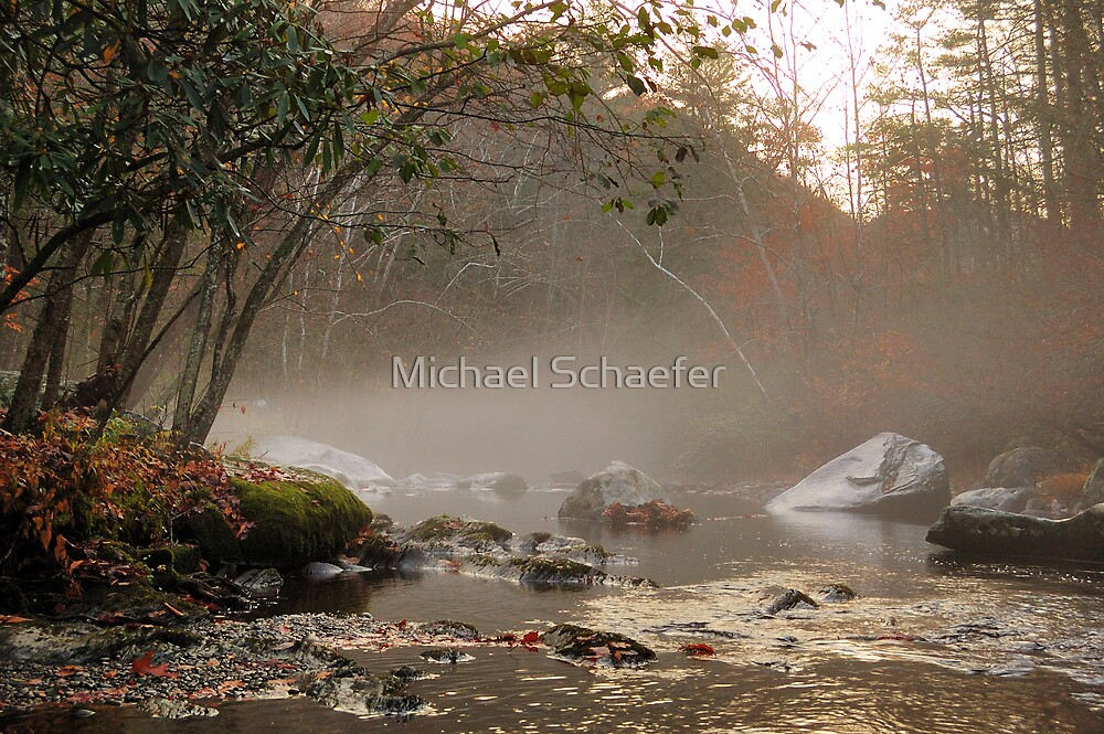 Little River by Michael Schaefer