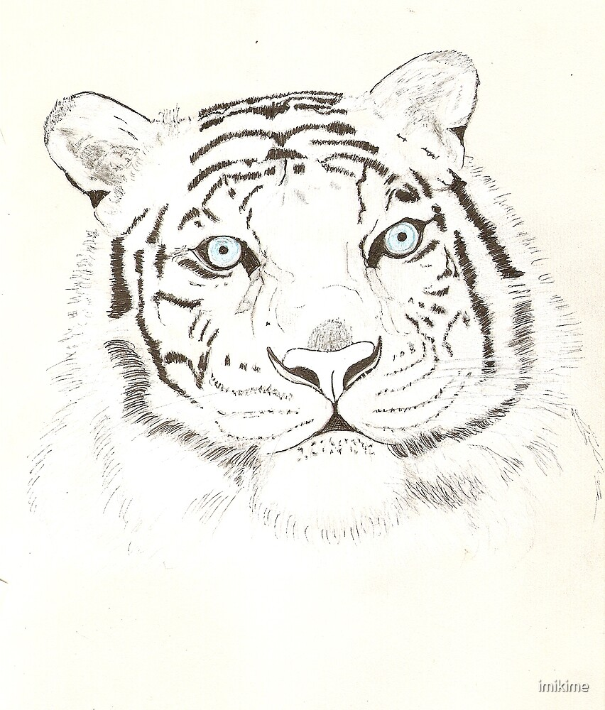 Bengal Tiger 4 by imikime